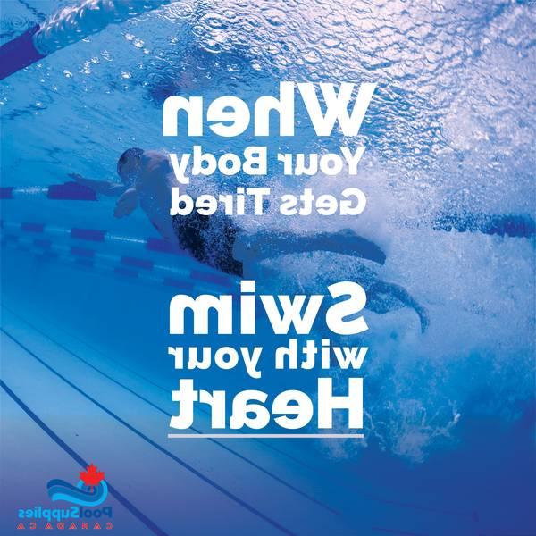 Prix piscine béton hors sol : Recevez gratuitement 3 Devis