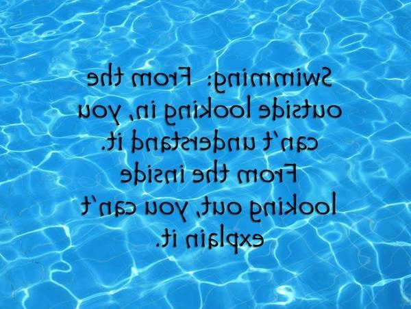 Prix piscine coque ou béton : Votre piscine au meilleur prix